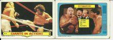Buy WWF Wrestling Cards Lot of 4 - 1985 - Andre the Giant, Animal, Beefcake, Putski
