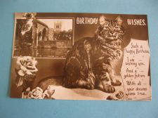Buy CAT OFFERS BEST WISHES 1938 OLD POSTCARD