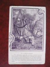 Buy CONGO FOREST MISSIONARIES OLD POSTCARD (#764)