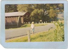Buy New York Andes Covered Bridge Postcard Covered Bridge Greetings From Andes~484