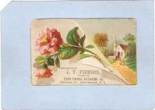 Buy New York Amsterdam Victorian Trade Card J. T. Pierson, Market Street~60