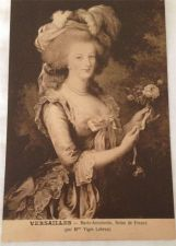 Buy Sepia Postcards in Album French Palace of Versailles 48 Unused