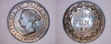 Buy 1899 Canada 1 Large Cent World Coin - Canada