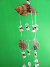 Buy Pirate Wind Chime Nature Sea shell from Tropical Beach Nautical Villa Boat Decor