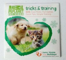 Buy Christmas DOG's Robin Hood XL Costume & 2 DVDs: Training-Games & Tricks +1 Gift