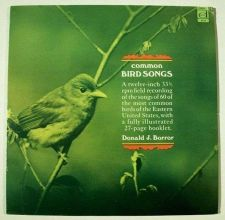 Buy COMMON BIRD SONGS ~ Donald J. Borror LP / Includes 27-page booklet 1970