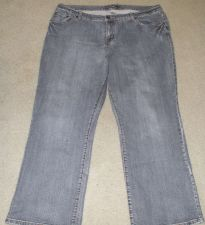 Buy Venezia Women's Jeans 5 Petite Inseam 29 Inches