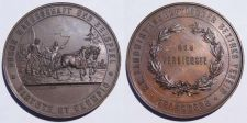 Buy Feldsberg Austria Agriculture and Industry Medal