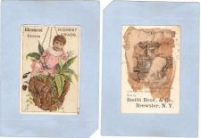 Buy New York Brewster Victorian Trade Card Smith Bros., & Co.,~66
