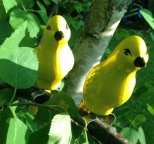 Buy Yellow Bird Pair With Branch Clamp - Garden Decor, Outdoor Areas NEW