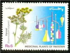 Buy Pakistan 1993 Fennel Medicinal Plants Series (1v) MNH (US-01)