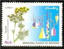 Buy Pakistan 1993 Fennel Medicinal Plants Series (1v) MNH (US-01)