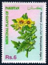 Buy Pakistan 1994 Henbane Medicinal Plants Series (1v) MNH (US-01)