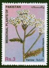 Buy Pakistan 1996 Yarrow Medicinal Plants Series (1v) MNH (US-01)