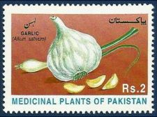 Buy Pakistan 1997 Garlic Medicinal Plants Series (1v) MNH (US-01)