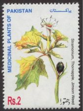 Buy Pakistan 1998 Dhatura Medicinal Plants Series (1v) MNH (US-01)