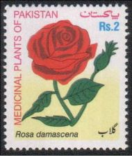 Buy Pakistan 20063 Red Rose Medicinal Plants Series (1v) MNH (US-01)