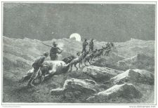 Buy NORTH POLE - RETURN FROM THE BEAR HUNTING - engraving from 1884