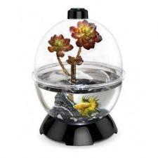 Buy bubble new wonder kit bio pets small