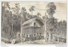 Buy NEW GUINEA - AIAMBORI VILLAGE - engraving from 1879