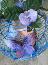 Buy butterfly lantern/centerpiece, blue and lilac handmade candle included
