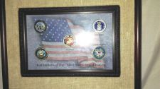 Buy U.S. Military Die Struck Hand Painted Enameled Ball Markers - Framed