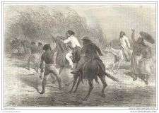 Buy SUDAN (AFRICA) - SKIRMISH IN KAROVEL WOODS - engraving from 1865