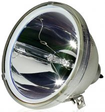 Buy SAMSUNG BP96-00224C BP9600224C 69375 BULB #35 FOR MODEL HLM507W/WX/XAA