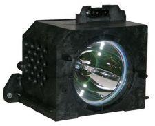 Buy SAMSUNG BP96-00224C BP9600224C LAMP IN HOUSING FOR MODEL HLN4365W1X/XAA
