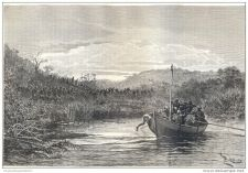 Buy KENYA (AFRICA) - DEFENDING THE BOAT - engraving from 1886