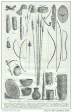 Buy GABON (AFRICA) - WEAPONS, GUNS & DOMESTIC TOOLS OF NATIVES - engraving from 1862