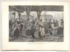 Buy BELGIUM - DESALTING SKIN - engraving from 1882