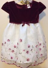 Buy Girl George Burgundy Velour Floral Holiday Special Occasion Dress Size 12 months