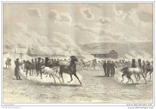 Buy RUSSIA - BREEDING FARM OF PREVALLIE - engraving from 1878