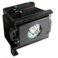 Buy SAMSUNG BP96-01073A BP9601073A LAMP IN HOUSING FOR TELEVISION MODEL HLR6167WX
