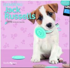 Buy By Myrna - Jumping Jack Russells 2015 Square 12x12 (Multilingual Edition)