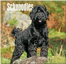 Buy Schnoodles 2015 Square 12x12 (Multilingual Edition)