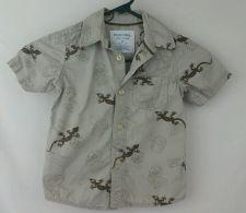 Buy Sonoma 3T tan Lizard Short sleeve Boys shirt