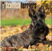Buy Scottish Terriers 2015 Square 12x12 (Multilingual Edition)