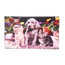 Buy Dogs And Cats Floor Mat