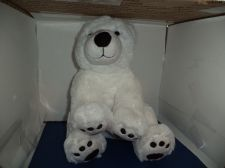 Buy Plush White Polar Bear 2013 BAB