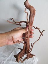 Buy Brown Driftwood Nature Root for SUGAR GLIDER Macaw Parrot Cage,Aquarium Lizard