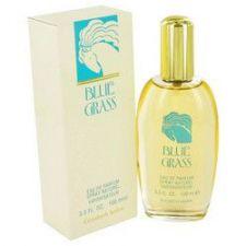 Buy BLUE GRASS by Elizabeth Arden Eau De Parfum Spray 3.3 oz (Women)