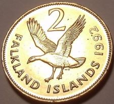 Buy Large Unc Falkland Islands 1992 2 Pence~Upland Goose~We Have Unc Coins~Free Ship