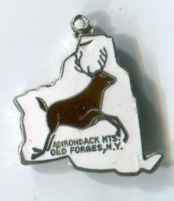 Buy ADIRONDACK MTS OLD FORGES : Enamel & Sterling Silver Travel Souvenir Map Charm
