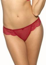 Buy A502T Le Mystère NEW 835 Isabella Embroidered Lace Waistband Sheer Mesh Thong PR