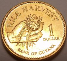 Buy Gem Unc Guyana 1996 Dollar~Only Year Minted~Rice Harvest~Free Shipping