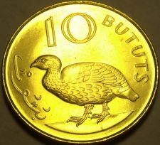 Buy Large Gem Unc Gambia 1998 10 Bututs~Double Spurred Francolin~Last Year~Free Ship