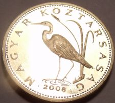 Buy Rare Proof Hungary 2008-BP 5 Forint~Only 4,000 Minted~Great White Egrat~Free Shi