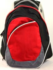 Buy Leeds All-Purpose Backpack